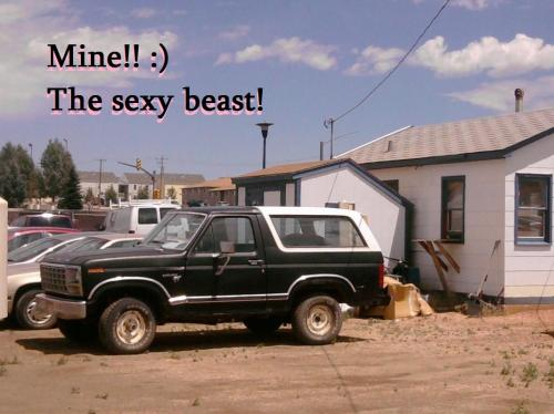 <img500*374:stuff/This_is_my_bronco_named_sexy_beast.jpg>