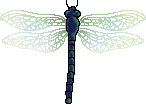 <img:stuff/aj/2605/dragonfly.png>